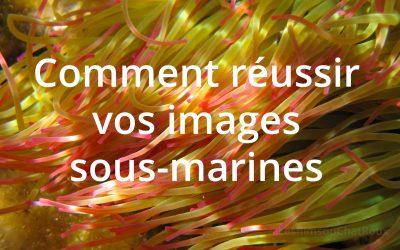 Comment réussir de belles images sous-marines